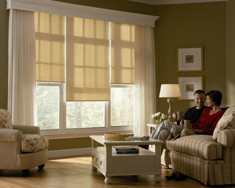BlindQuest Designer Roller Shades