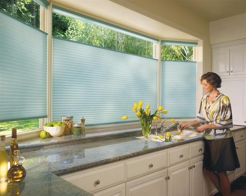 BlindQuest Troy IL Duette Honeycomb Shades